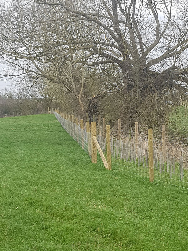Fencing – post & rail / stock fencing